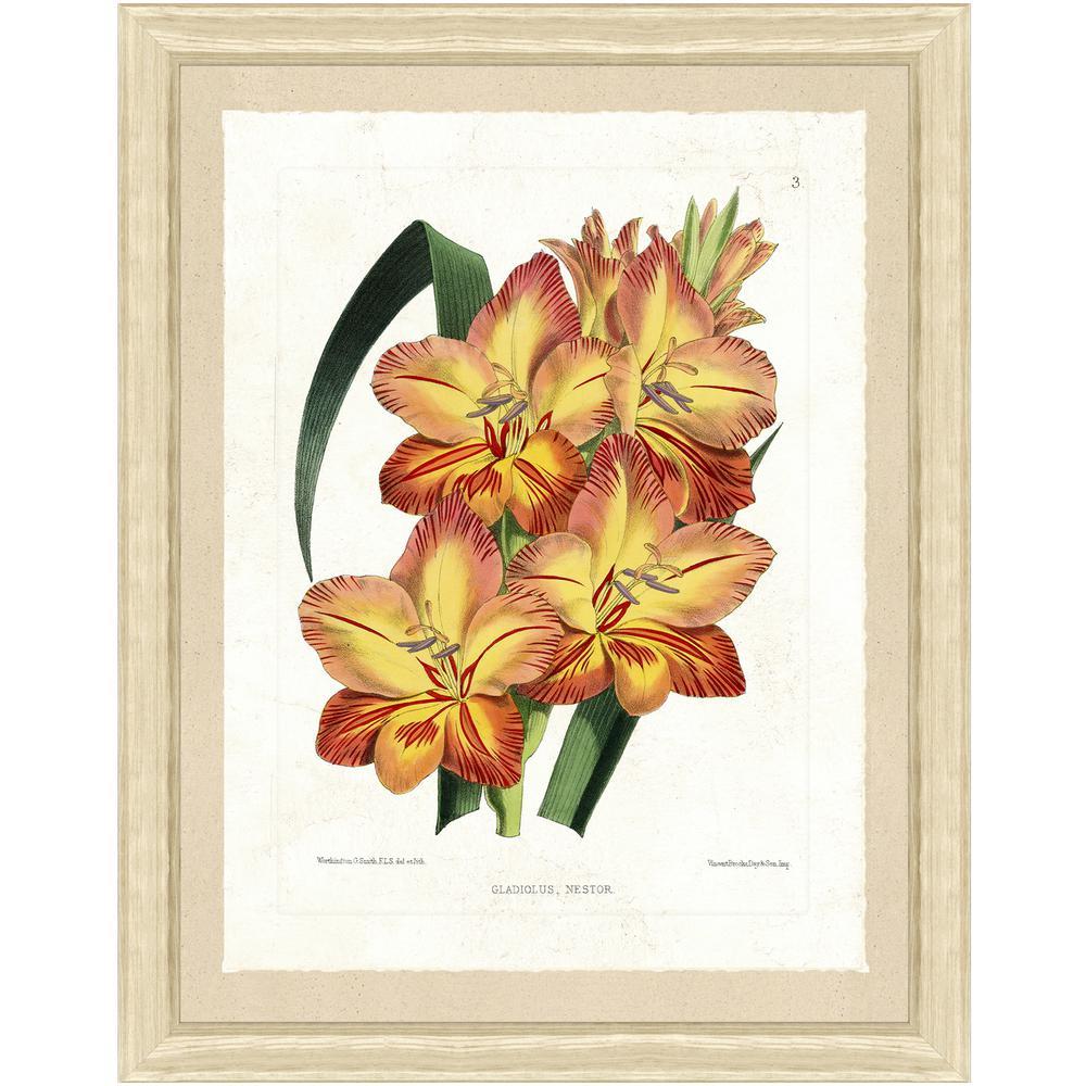 "22 in. x 28 in. ""Botanical Bundle II"" Framed Archival Paper Wall Art"