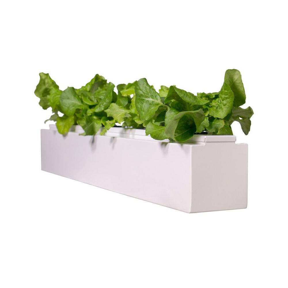 36 in. White Hydroponic Square Planter with Lid and Grow Kit