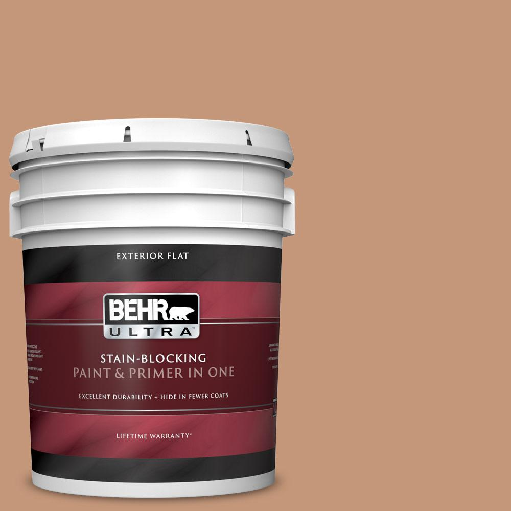 Behr Ultra 5 Gal Home Decorators Collection Hdc Ac 02 Copper Moon Flat Exterior Paint Primer 485405 The Home Depot