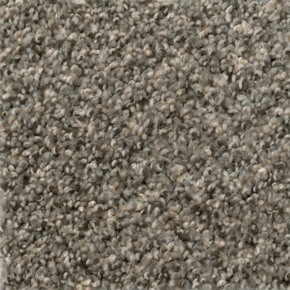 TrafficMaster Gallop - Color Maverick Texture 12 ft. Carpet