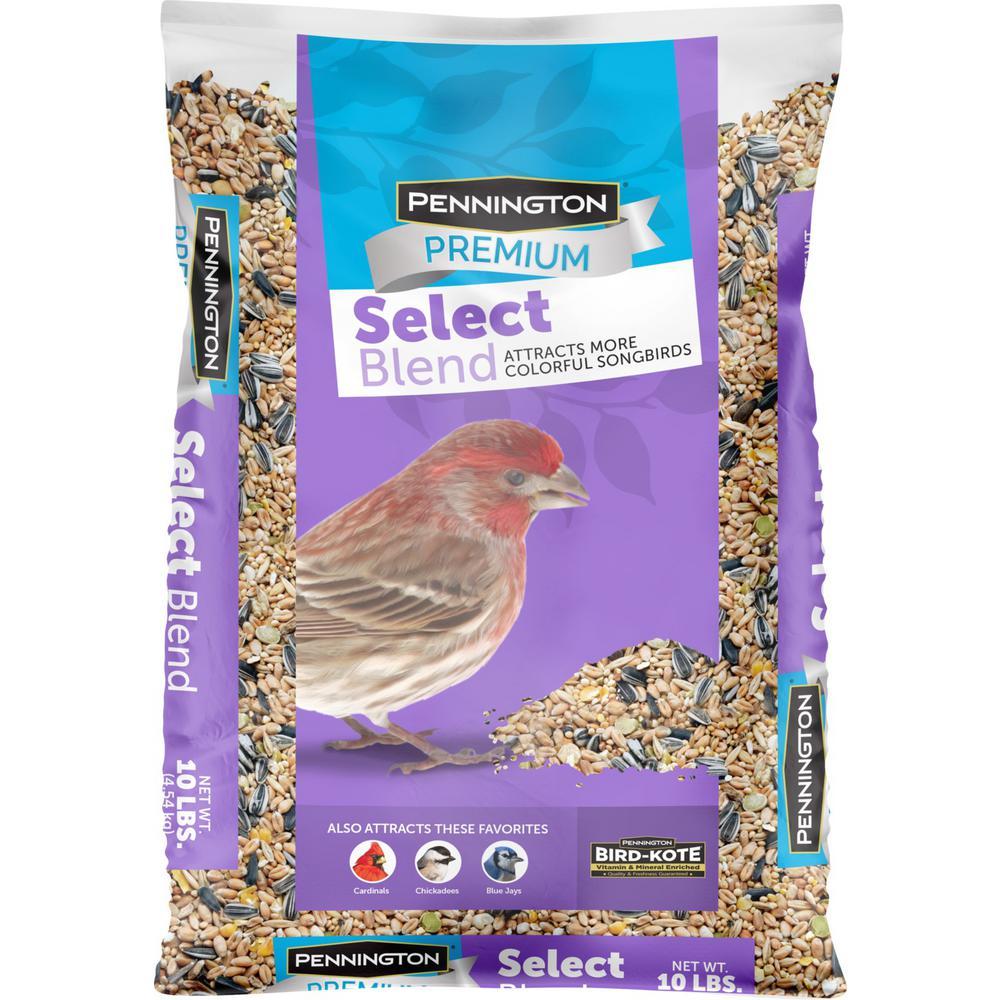 Premium Select 10 lbs. Wild Bird Seed Blend