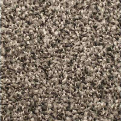 Carpet Sample - Lake View - Color Dovetail Texture 8 in. x 8 in.
