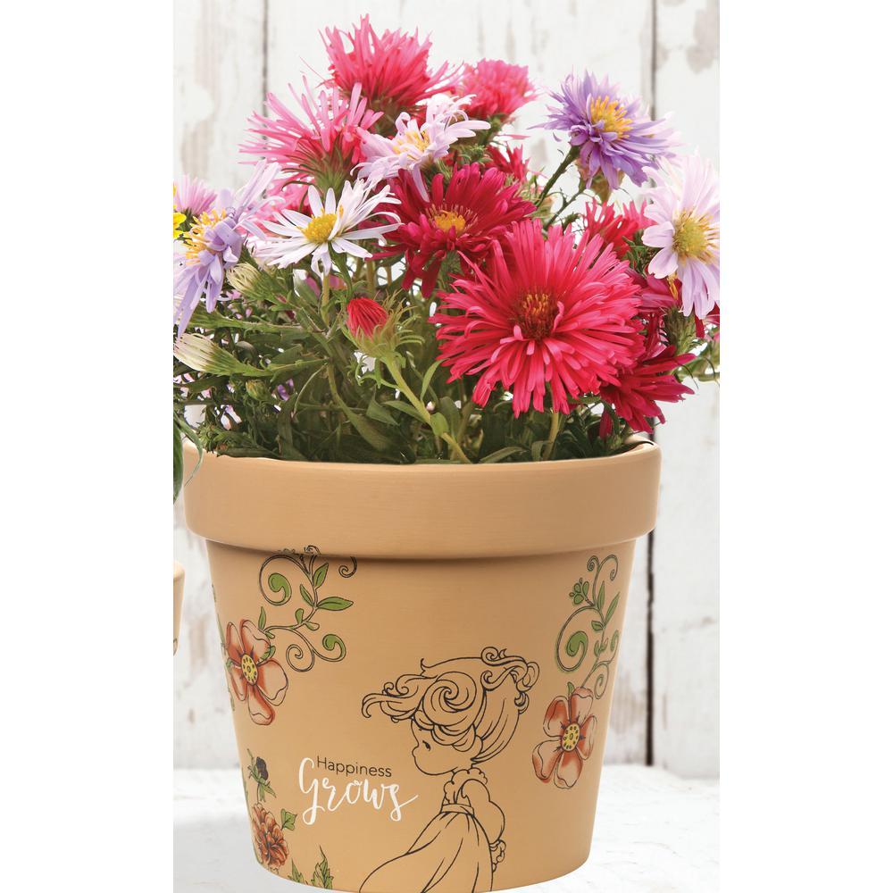 Happiness Grows 6 in. Dia Terra Cotta Medium Pot