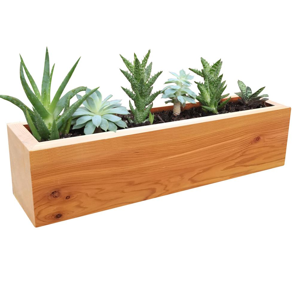 Gronomics 4 In X 4 In X 16 In Succulent Planter Wood Rectangular
