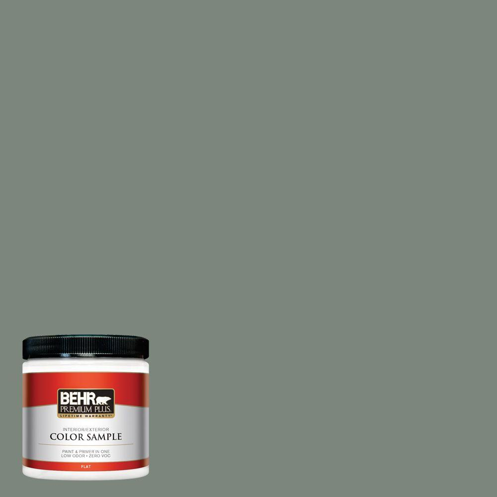 8 oz. #N410-5 Village Green Interior/Exterior Paint Sample