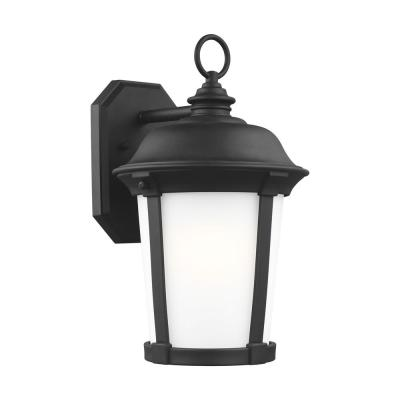 Calder 1-Light Black Outdoor 16.5 in. Wall Lantern Sconce