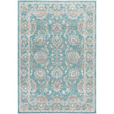 Sandoc Teal 8 ft. x 11 ft. Indoor Area Rug