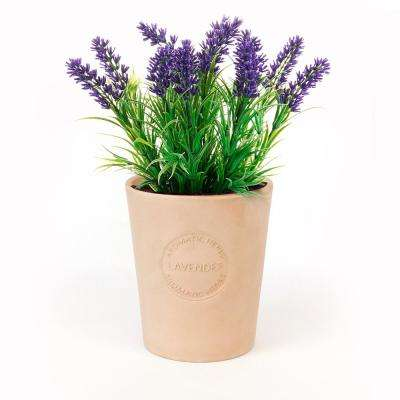 Lavender Seeds in Natural Clay Planter