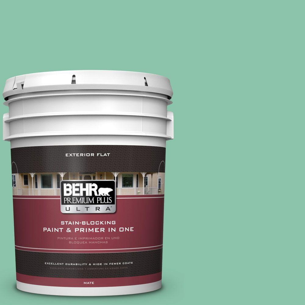 BEHR Premium Plus Ultra Home Decorators Collection 5-gal. #hdc-WR14-8 Spearmint Frosting Flat Exterior Paint