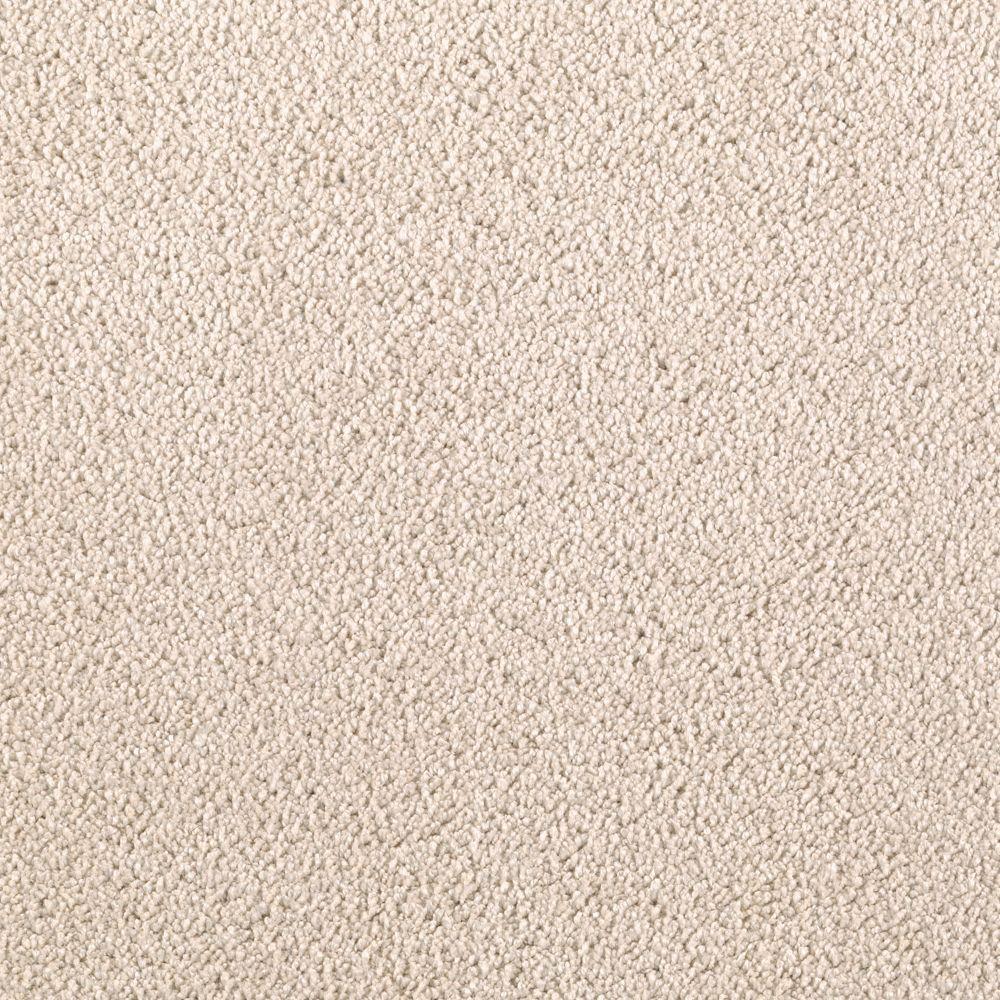 Wesleyan I - Color Artist's Canvas Texture 12 ft. Carpet