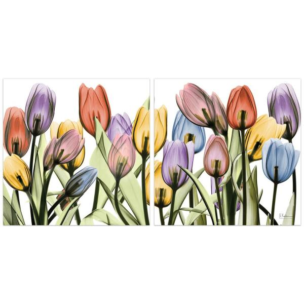 ''Tulip Scape'' Unframed Free Floating Tempered Art Glass Flower Wall Art Print 24 in. x 24 in. (Set of 2)