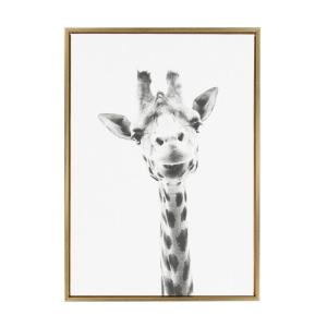 Kate And Laurel 33 In X 23 In Alpaca Portrait By Tai Prints Framed Canvas Wall Art 212634 The Home Depot