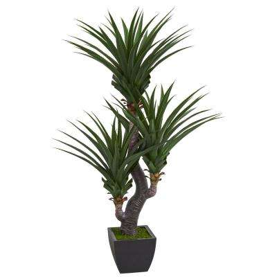 Indoor 6 ft. Dracaena Artificial Plant with Black Planter