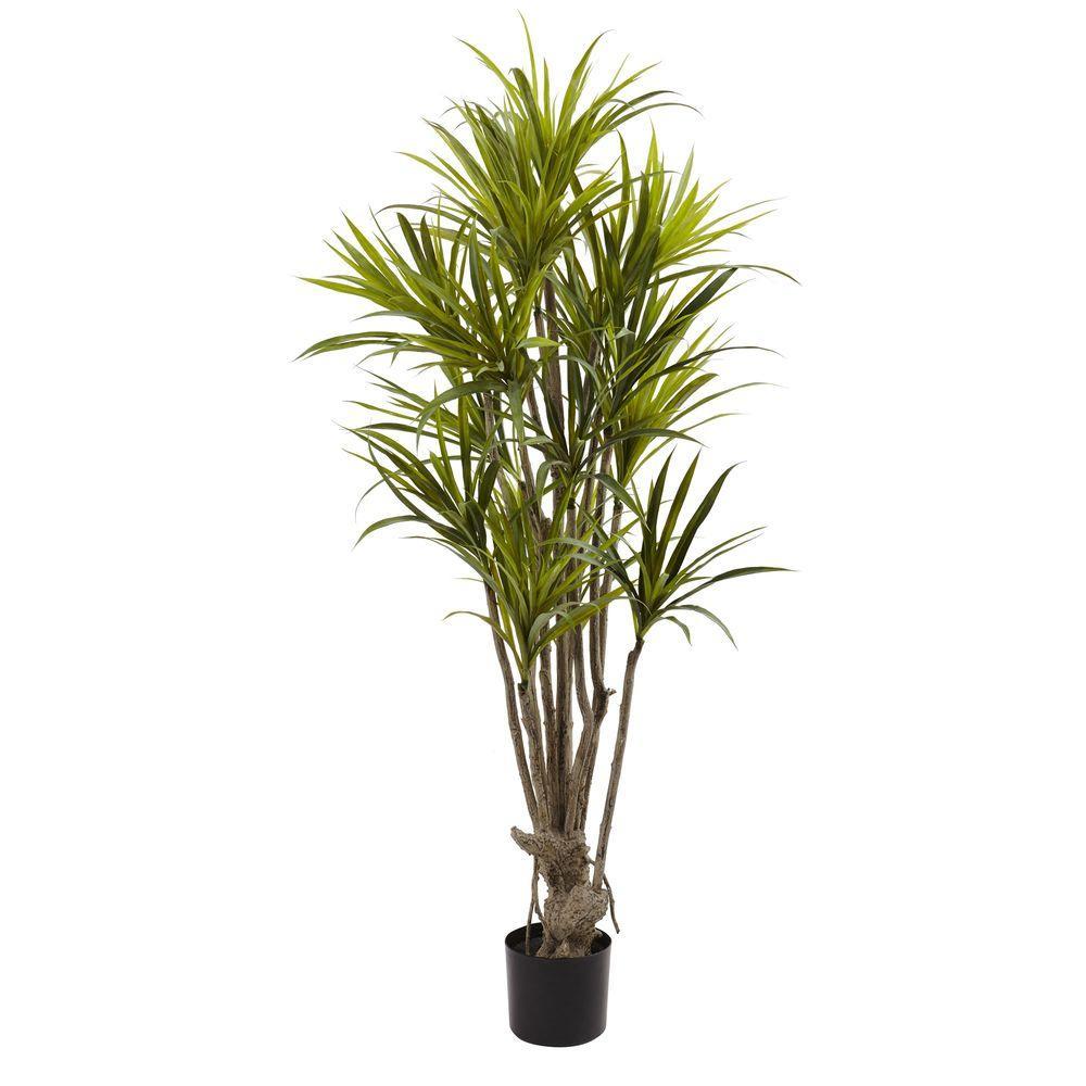Nearly Natural-5 ft. Dracaena Silk Tree