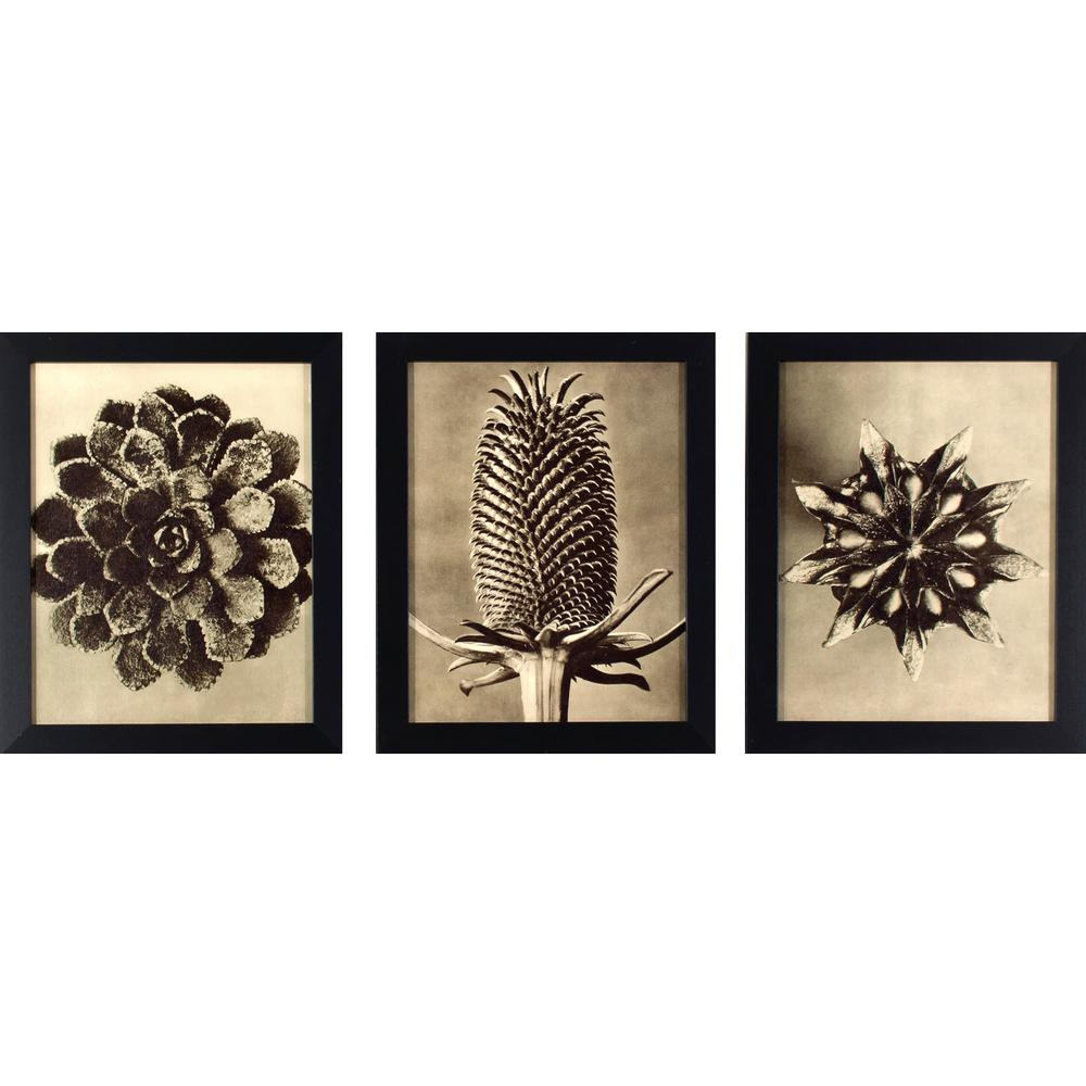 Picture Frame Grouping Set