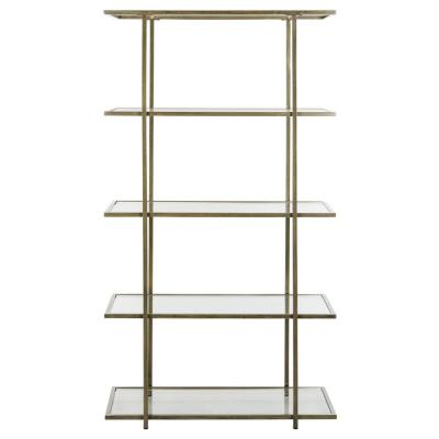 72 in. French Silver/Clear Metal 5-shelf Etagere Bookcase with Open Back