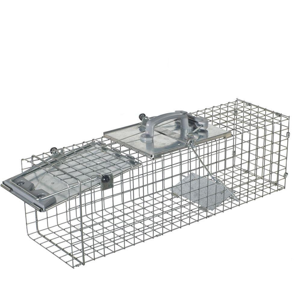 Medium 1-Door Easy Set Live Animal Cage Trap for Rabbit and Skunk