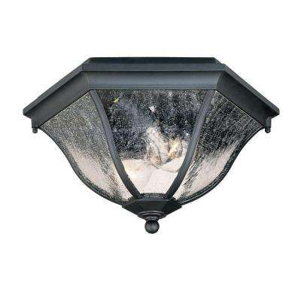 Flushmount Collection Ceiling-Mount 2-Light Matte Black Outdoor Light Fixture