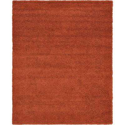 Solid Shag Terracotta 8 ft. x 10 ft. Area Rug