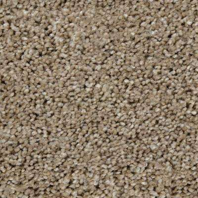 Carpet Sample - Trendy Threads II - Color Kensington Texture 8 in. x 8 in.