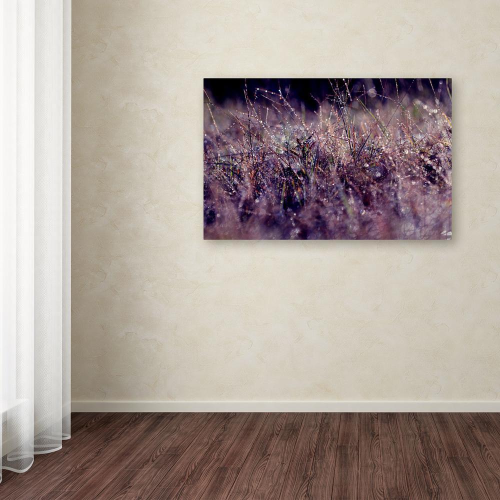 "30 in. x 47 in. ""Purple Rain"" by Beata Czyzowska Young Printed Canvas Wall Art"