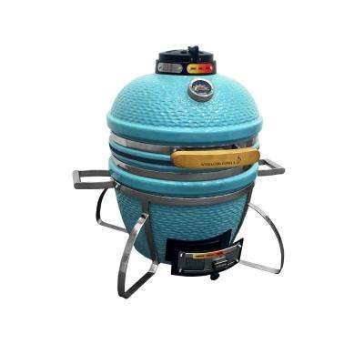 Cadet Kamado Charcoal Grill in Teal