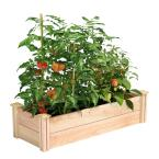 16 in. x 4 ft. x 11 in. Premium Cedar Raised Garden Bed