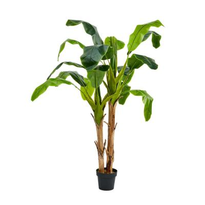 72 in. Artificial Double Trunk Banana Leaf Tree