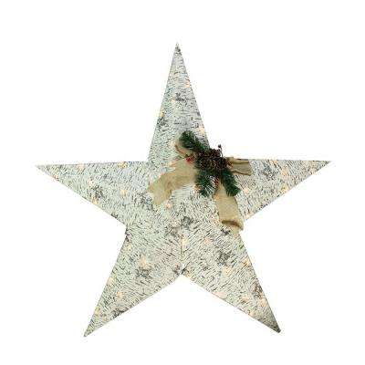 36 in. Christmas Lighted 2.5D Country Rustic Birch Star Decoration with Clear Lights