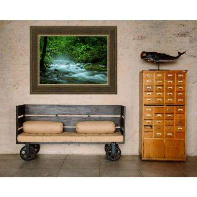 25.5 in. x 34.5 in. 'Streaming in the Smokies' by Jason Clemmons Fine Art Canvas Framed Print Wall Art