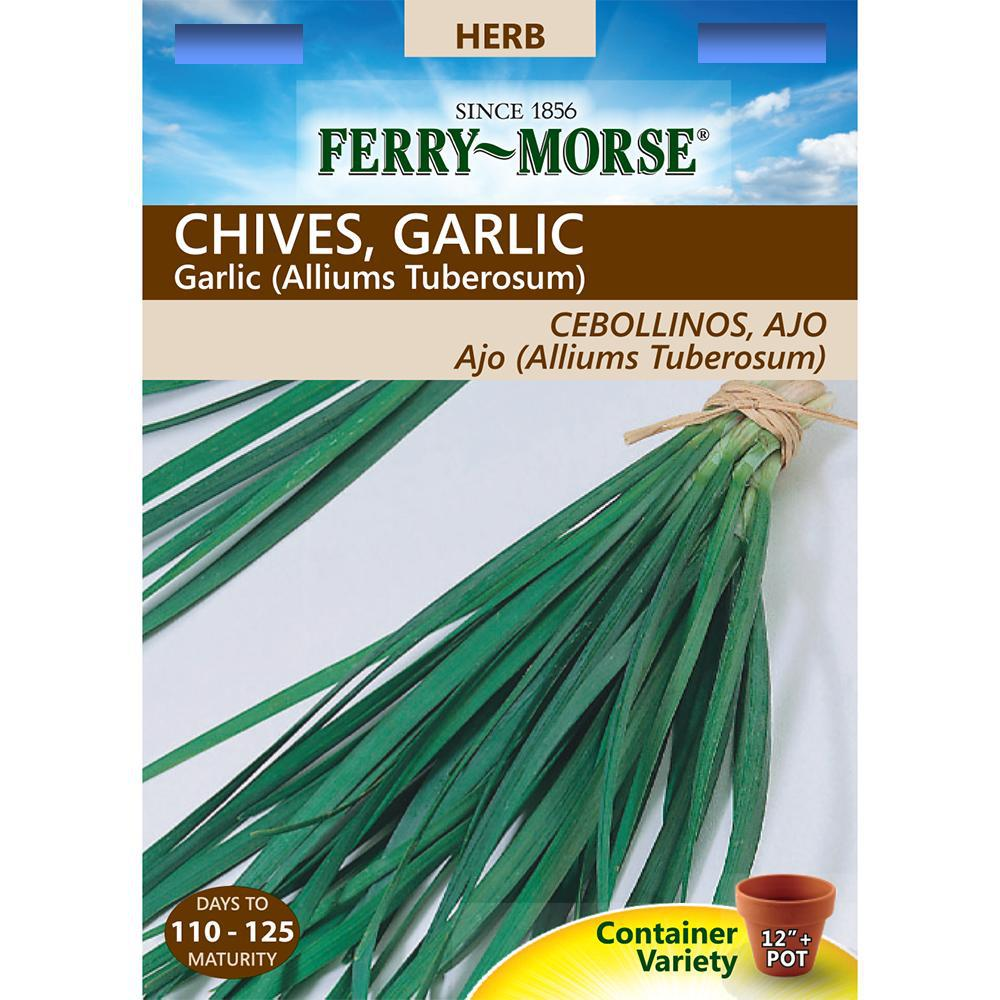Ferry-Morse Chives Garlic Seed