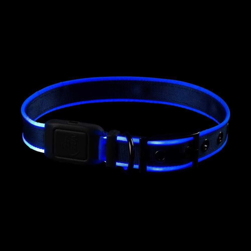 NiteDog - L - Blue/Blue Rechargeable LED Collar
