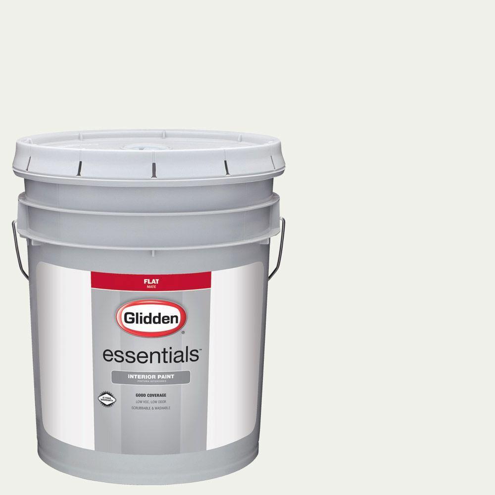 White Paint Interior: Glidden Essentials 5 Gal. #HDGY56 White On White Flat