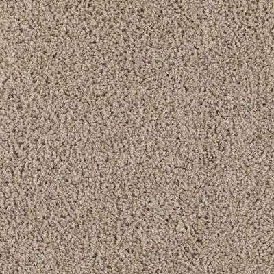 Carpet Sample - Ashcraft II - Color Mellow Taupe Texture 8 in. x 8 in.