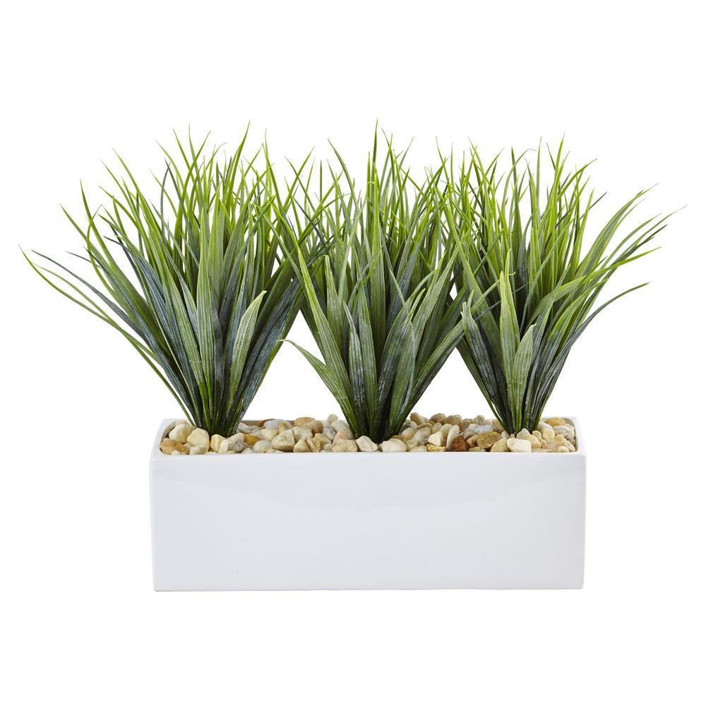 12 in. Vanilla Grass in Rectangular Planter