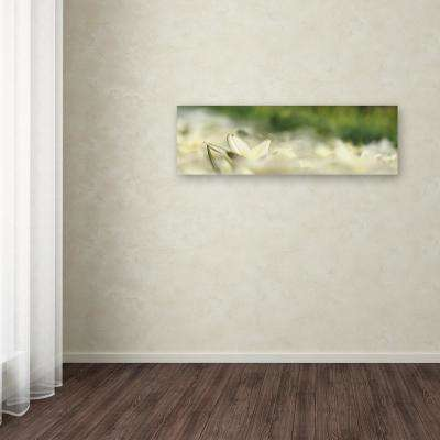 """16 in. x 47 in. """"White Tulip Scape"""" by Cora Niele Printed Canvas Wall Art"""
