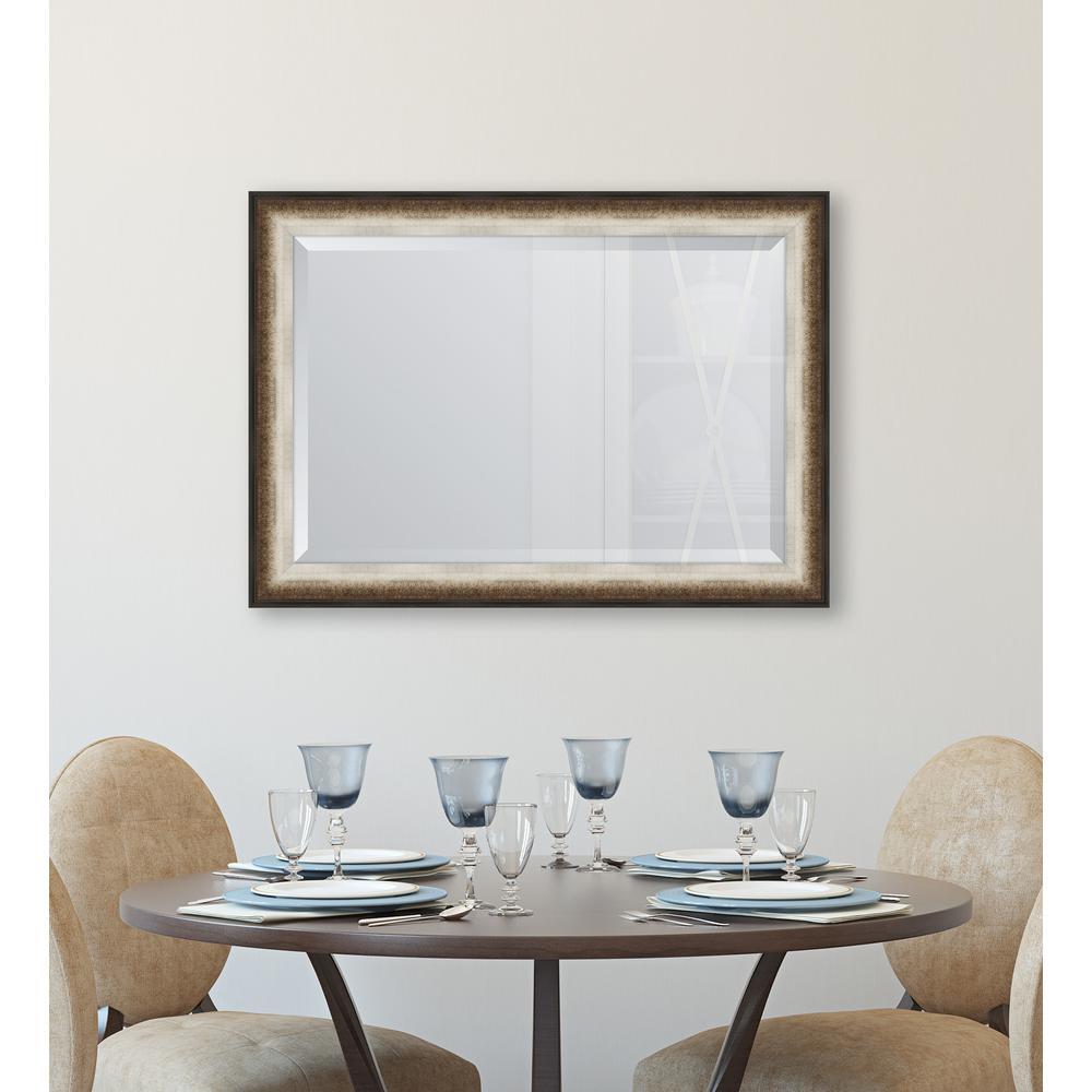 31 in. x 43 in. Framed Black & Soft Silver Radiant Swan Mirror
