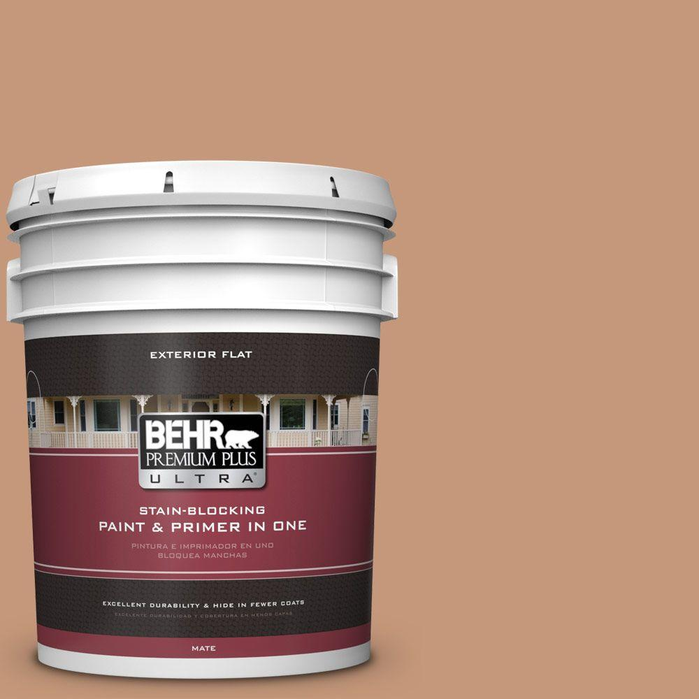 Home Decorators Collection 5-gal. #HDC-AC-02 Copper Moon Flat Exterior Paint