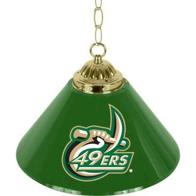 North Carolina Charlotte 14 in. Single Shade Stainless Steel Hanging Lamp