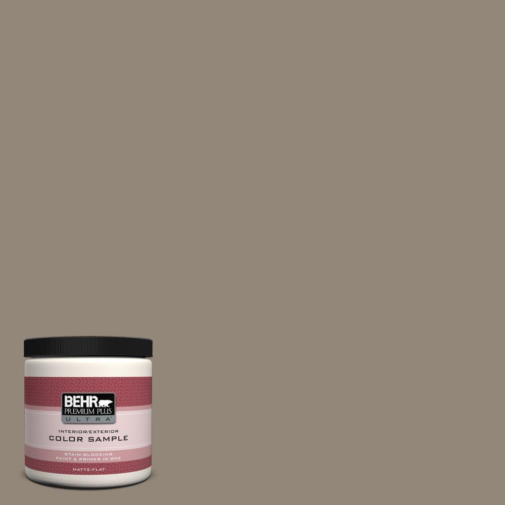 8 oz. #PPU5-6 Ethiopia Interior/Exterior Paint Sample