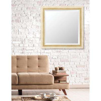 Acadia 29 in. x 29 in. Transitional Framed Bevel Mirror