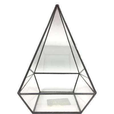 Geometric 5 in. x 8 in. Glass Pyramid Terrarium