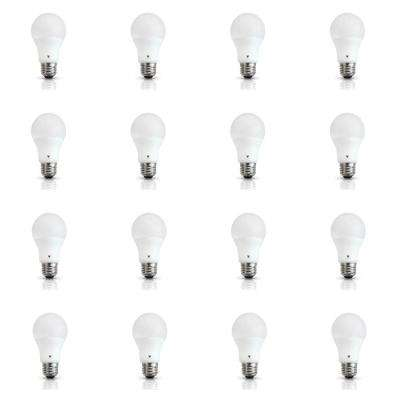 60-Watt Equivalent A19 E26 Base 800-Lumen LED Light Bulb Daylight (12-Pack)