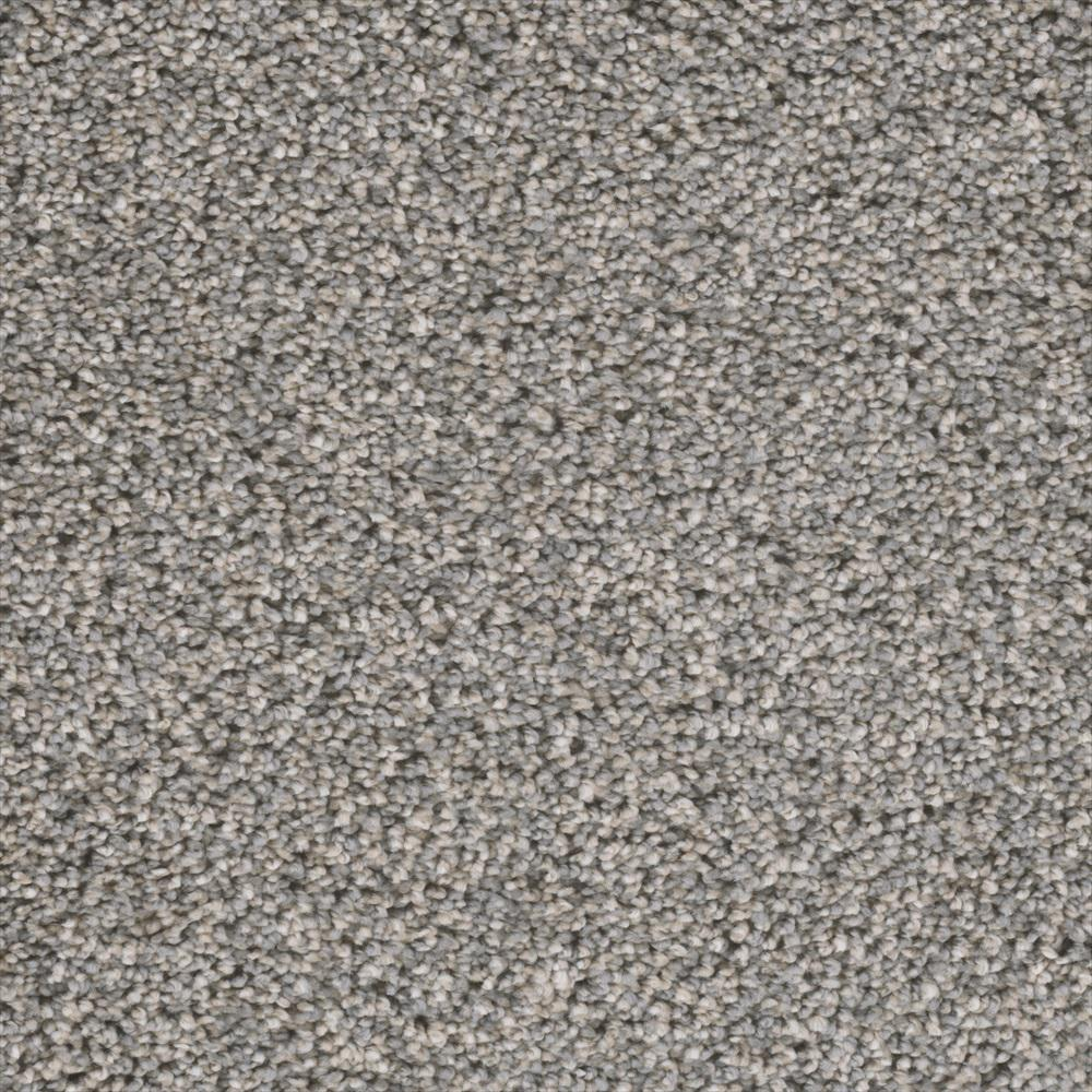 Home Decorators Collection Fall Skies II - Color County Fair Texture 12 ft. Carpet