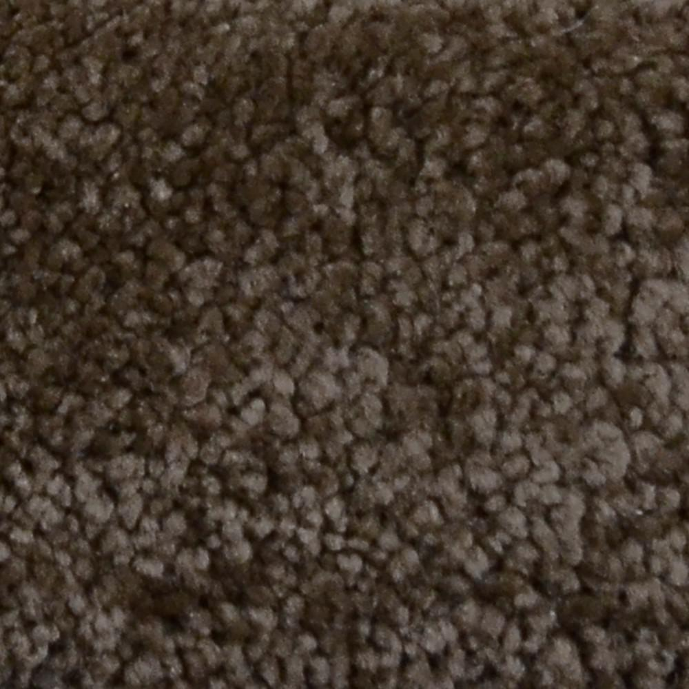 Carpet Sample - Alamo Hills II - Color Expedition Texture 8