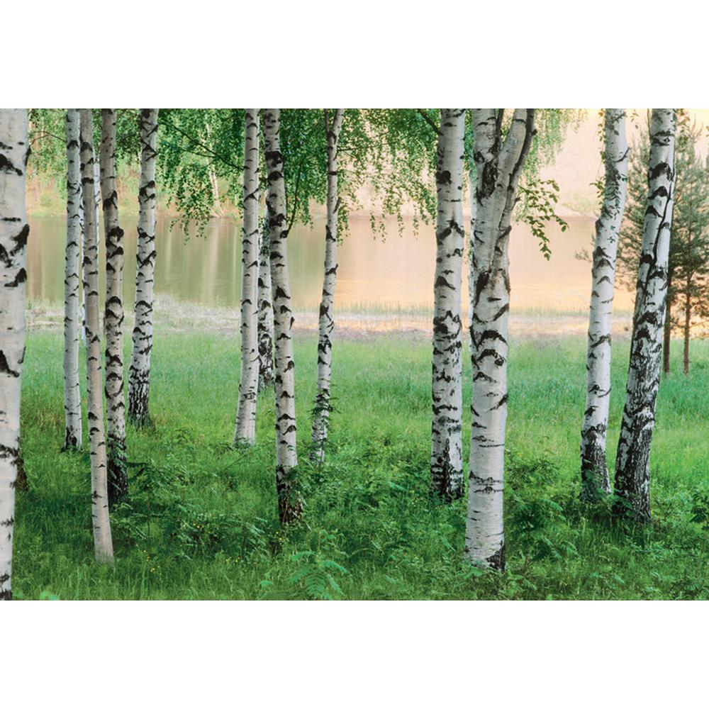 Ideal Decor 100 in x 144 in Nordic Forest Wall Mural DM290 The