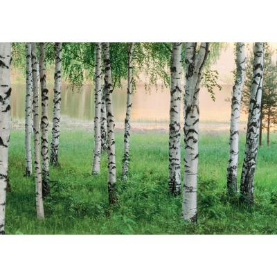 100 in. x 144 in. Nordic Forest Wall Mural