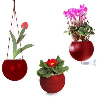 7 in. x 6 in. x 7 in. Bordeaux Plastic, Table, Wall and Ceiling Planter (3-Pack)