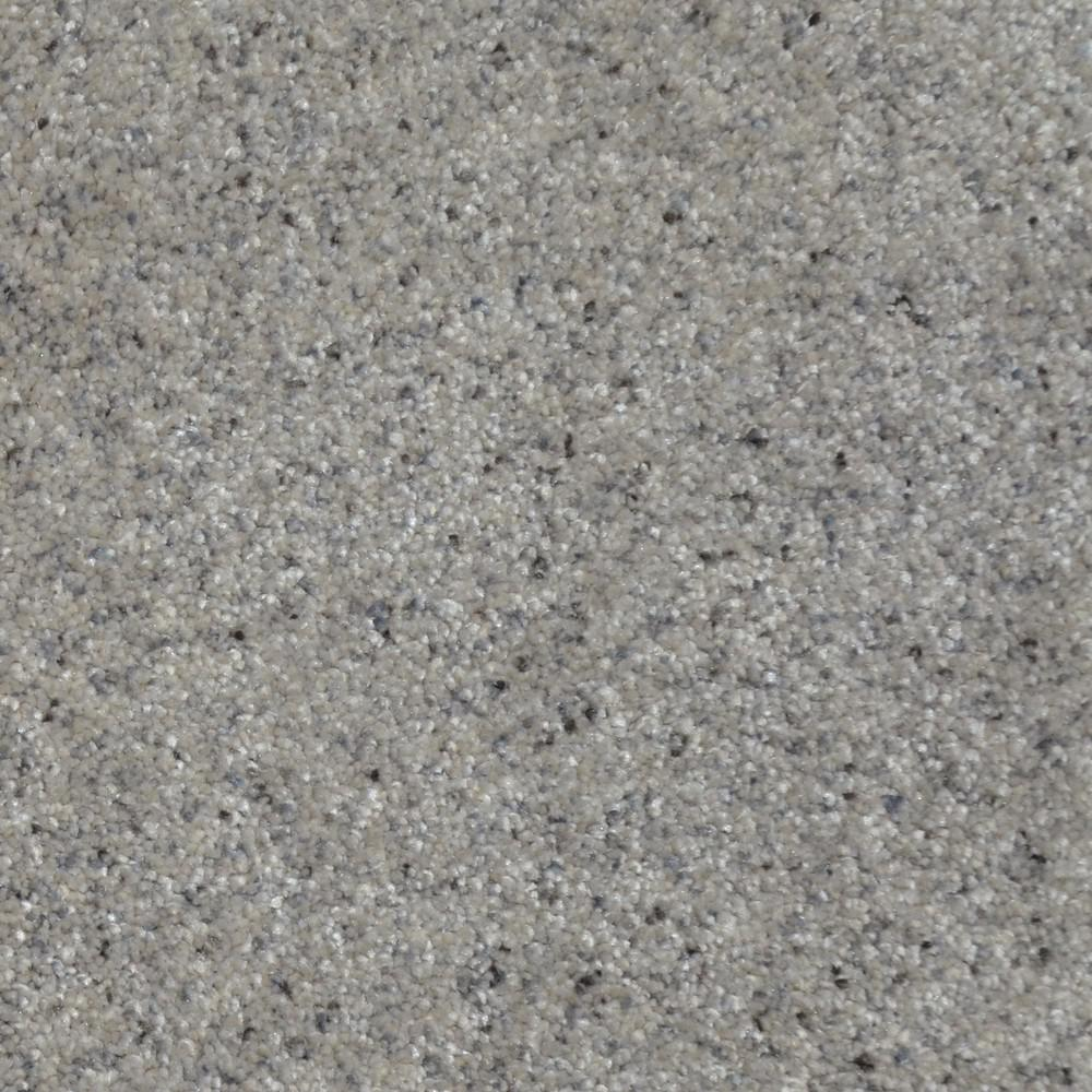 Home Decorators Collection Carpet Sample All The Best Ii Color Bromley Texture 8 In