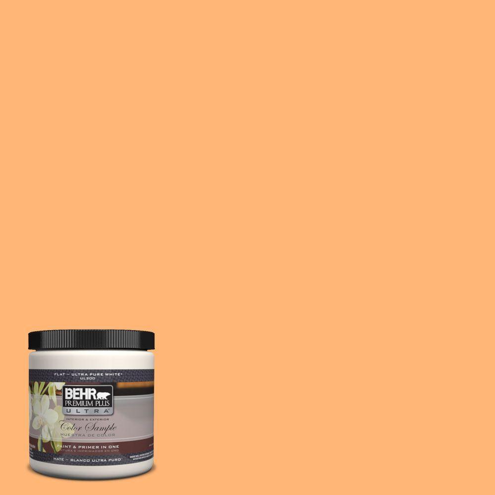 8 oz. #PPH-21 Ripe Peach Interior/Exterior Paint Sample